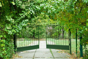 Gate Entry Systems & Driveway Gates | Atlanta Entry Systems, LLC